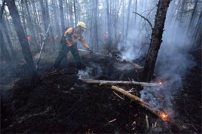 El denso humo que producen afecta a unas 800 comunidades.