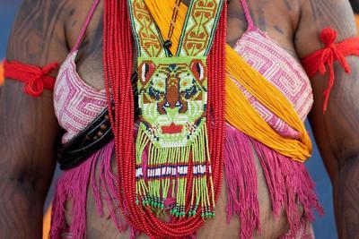 El pleno del Tribunal Supremo Federal suspendió recientemente todos los efectos de un decreto por el que el Bolsonaro transfirió las decisiones sobre la demarcación de reservas indígenas al Ministerio de Agricultura, una medida que había generado la protesta de los indios en el país.