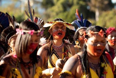 La medida le otorgaba la responsabilidad de identificar, delimitar y crear nuevas reservas indígenas a la cartera de Agricultura, en manos de Tereza Cristina Correa, una hacendada que coordinaba la bancada de los propietarios rurales en el Congreso.