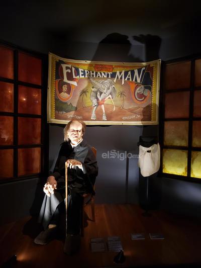 Destacan las esculturas del Hombre Anfibio de La Forma del Agua, los personajes de la película Freaks de Tod Browning y el Hombre Elefante.