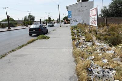 Olvidados. Mientras se anuncia la renta o venta de algunos terrenos, estos se dejaron en el pasado para actualmente tan solo acumular basura.