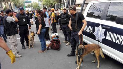 A dos años del fatídico suceso, Omar Arreola Carrazco, comandante del Escuadrón Canino de la DSPM, recuerda cómo fue aquel momento en el que llegaron a la Ciudad de México para apoyar en el rescate de personas que habían quedado bajo los escombros.