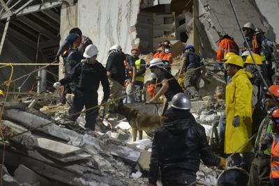 El comandante señaló que la participación para las labores de rescate fue muy activa y reconocían hasta con aplausos la presencia de los diferentes binomios caninos presentes en la ciudad.