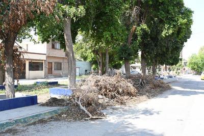 No recogen los desechos. Los vecinos denunciaron que han acudido a podar árboles, pero parte de la basura permanece todavía en el lugar, incluso invadiendo parte de la calle.