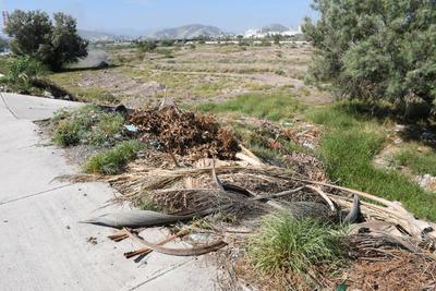 Quema de basura. Debido a la gran cantidad de basura, en diferentes ocasiones algunas personas han iniciado fuego para eliminar los desechos, generando una gran cantidad de contaminación y exigiendo la presencia de bomberos, así como Protección Civil, ya sea de Torreón o Gómez Palacio.