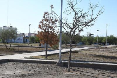 Áreas verdes  falta de vegetación plazas áreas verdes