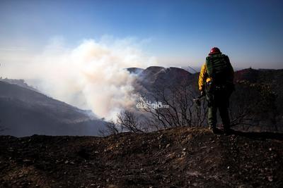 El gobernador de ese estado, Gavin Newsom, aseguró en una entrevista a la emisora de radio pública NPR que los bomberos han respondido a 330 focos de fuego en los últimos días.