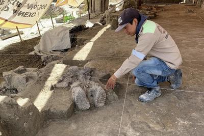 El arqueólogo Luís Córdoba Barradas informó además que en este sitio se encontraron dos trampas de mamut consideradas como las primeras en el mundo.