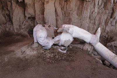 El arqueólogo dijo también que nunca se había encontrado una gran cantidad de huesos de mamut en un único sitio