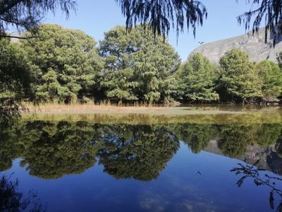 De los cerca de 300 humedales Ramsar que hay en México, solo cinco están en el desierto, uno de ellos es el Cañón de Fernández.