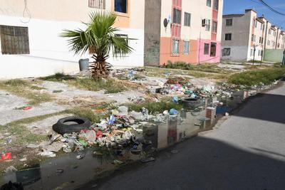 Un riesgo. Habitantes de la colonia Rincón La Merced, en la zona conocida como Manhattan, tienen problemas con la basura, además de brotes de aguas negras.