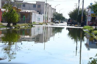 Drenaje. Además de los desechos, las personas tienen problemas con la red de drenaje, misma que despide aguas negras y malos olores.