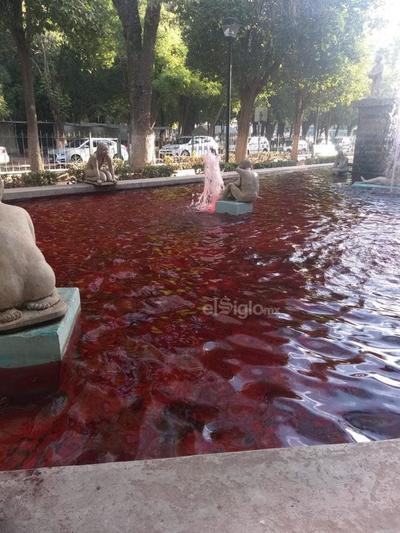 El agua amaneció de color rojizo.