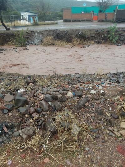 Se ha registrado el reporte de inundaciones en casas habitación en Topia.