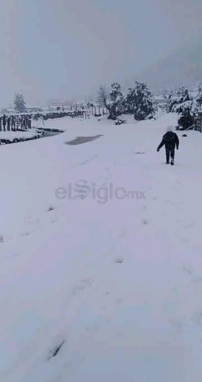 Protección Civil Municipal de Tepehuanes confirma nevadas en las localidades de Buenos Aires, Ciénega de Frailes, El Columpio, Potrerillos, El Huacal y El Conejo.