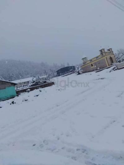 La Unidad Forestal 4 destaca la caída de nieve en las localidades de San José y Vencedores del municipio de San Dimas.