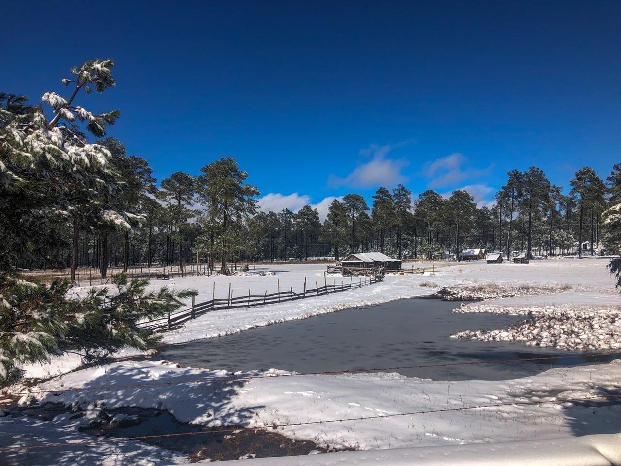Nieve en Durango deja imágenes de postal