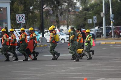 Bomberos en conjunto con personal del Ejército Mexicano, atendieron el siniestro.