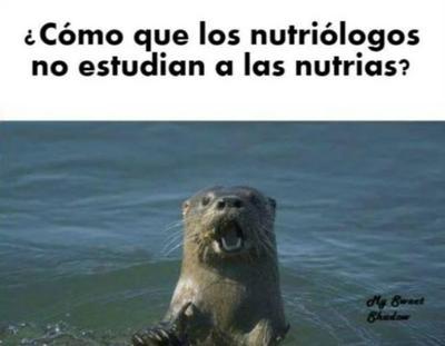 Celebran el Día del Nutriólogo con memes