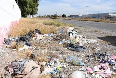 Fauna. También a los lados, en los acotamientos, los utilizan para dejar todo tipo de desechos, propiciando fauna nociva.