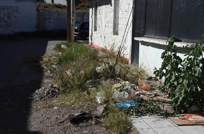 Algunas terrenos están solos y dejan la basura, incluso en las banquetas al lado de las viviendas que están habitadas.