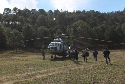 Destruyen 2 mdp de amapola en Durango