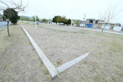 Pasto invasivo. La cancha de voleibol de playa es de las más dañadas, con la arena dispersa y el pasto naciente. La cordonería está casi invisible por la arena que la cubre, además no se cuenta con la red del juego.