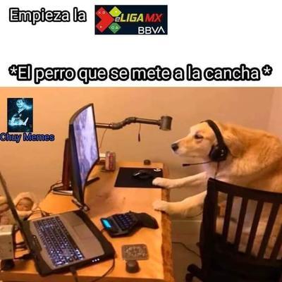 Los mejores memes del inicio de la eLigaMX