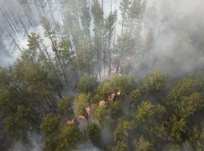Así fue el incendio en la zona de exclusión de Chernóbil