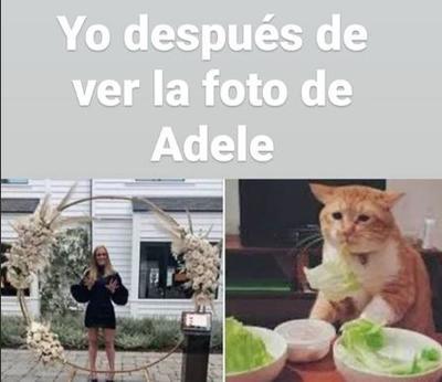 Los mejores memes de la increíble transformación de Adele