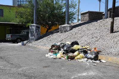 Desechos. En algunas calles se observa la acumulación de basura que además de expedir malos olores, en ocasiones los perros esparcen los desechos.