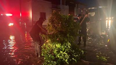 Elementos de Protección Civil del Estado, así como de la Unidad Municipal y bomberos de ese municipio y de Torreón, trabajaron durante toda la noche con bombas para el desagüe a fin de que fuera disminuyendo el nivel de agua acumulada.