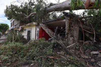 Una fuerte tromba que duró aproximadamente 40 minutos en el municipio de San Pedro de las Colonias dejó hasta el momento más de 300 casas afectadas, así como una persona sin vida y otra no localizada.