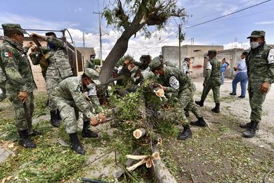 Apoyan. La Secretaría de la Defensa Nacional (Sedena) también se unió a los trabajos de retiro de árboles y apoyo a los sampetrinos por el caos que originó el fenómeno natural en la cabecera municipal.