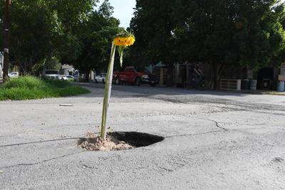 Sobre la calle González Ortega, entre las avenidas Aldama y Guerrero, apareció un hundimiento en medio de la vialidad, en el que los vecinos colocaron un palo a manera de señal con la finalidad de evitar accidentes.