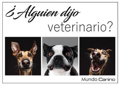 Celebran el Día del Veterinario con humor y memes