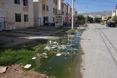 Lagunas verdes. Los bordes de las banquetas se pierden por el agua de color verde estancada de los drenajes taponeados de basura.