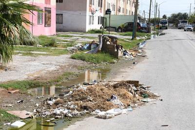 Basureros. Pequeños lotes de basura aparecen en las fachadas de los condominios, pues los colonos tiran cualquier tipo de desperdicio.