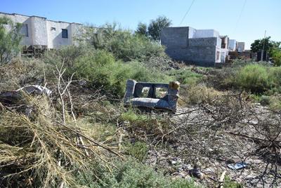 Maleza. La fotografía muestra las deplorables condiciones en que se encuentran desde hace mucho tiempo las orillas de la colonia Mayrán, lo que puede favorecer la aparición de fauna nociva para la salud.