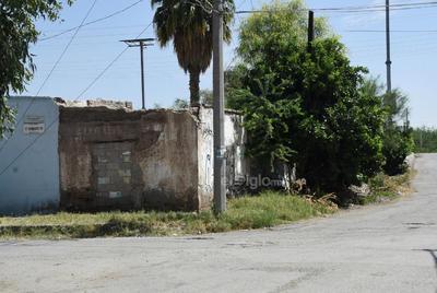 Baldíos. Las banquetas se pierden por la maleza y basura que se encuentran en diversos puntos de este sector habitacional de Torreón, lo que se vuelve un foco de infección por los bichos que también hay en el lugar, además de los fétidos olores por la acumulación de desperdicios.