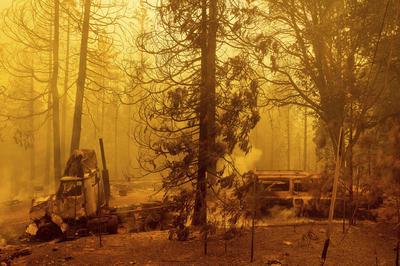 El gran temor de las autoridades es que estos números se han alcanzado incluso antes de la que en los últimos años venía siendo la 'temporada' de incendios, entre octubre y noviembre, y que este año se espera que sea especialmente peligrosa a causa de la extrema sequedad.