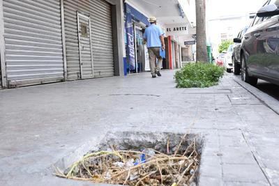 ¿Jardineras? Diversas áreas que eran destinadas  como jardineras han quedado olvidadas, llenas de basura, convirtiéndose en trampas.