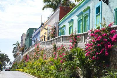 Luego de fundar Culiacán, el 14 de mayo de 1531 el español Nuño Beltrán de Guzmán llegó a esta bahía, que hoy en día es conocida como el Puerto de Mazatlán.