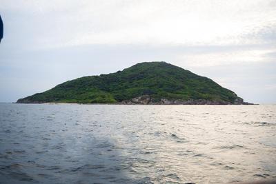 Lobos, Venados y Pájaros son Las Tres Islas distintivas de Mazatlán, convertidas en Área Natural Protegida por el Gobierno Federal el 2 de Agosto de 1978 y Patrimonio Mundial de la Humanidad por la UNESCO el 15 de julio de 2005.