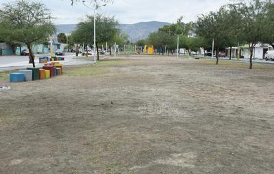 ¿Y lo verde? A lo largo de los cinco kilómetros de extensión del parque, el pasto ha desaparecido ante la falta de mantenimiento, solo tierra es lo que lo cubre.