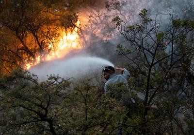 El director de Protección Civil dijo que ya hay más de 1,000 hectáreas calcinadas en Nuevo León, aunque no supo precisar la superficie afectada en Coahuila.