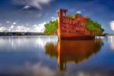 10. El barco SS Ayrfield A media hora de Sidney, podrás encontrar un barco abandonado que se convirtió en bosque. Durante la Segunda Guerra Mundial, en la Bahía de Homebush, en Australia, fue abandonado tras el cierre del astillero de desguace (cementerio de buques). Al pasar los años, le crecieron árboles de mangle por todos lados.