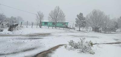 En plena primavera, Chihuahua y Sonora se cubren de blanco por nevada
