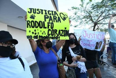 Exigen justicia para 'Rodolfo', el perrito asesinado en Los Mochis