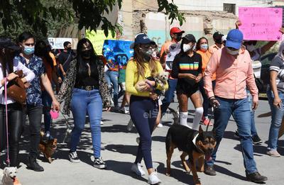 Marchan en Torreón en contra del maltrato animal